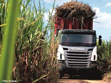 Expresso Nepomuceno compra 34 caminhões Euro 5 da Scania