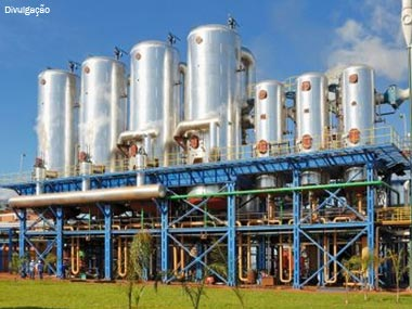 Bunge inaugura fábrica de biodiesel no Brasil