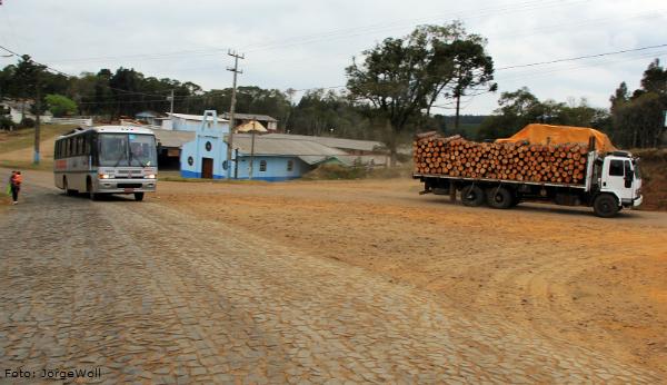 madeireiros-parana-rodovias