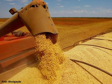 Safra do Brasil pode chegar a 209 milhões de toneladas em 2015