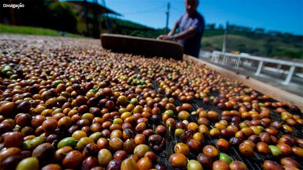 cafe-exportacoes-2017
