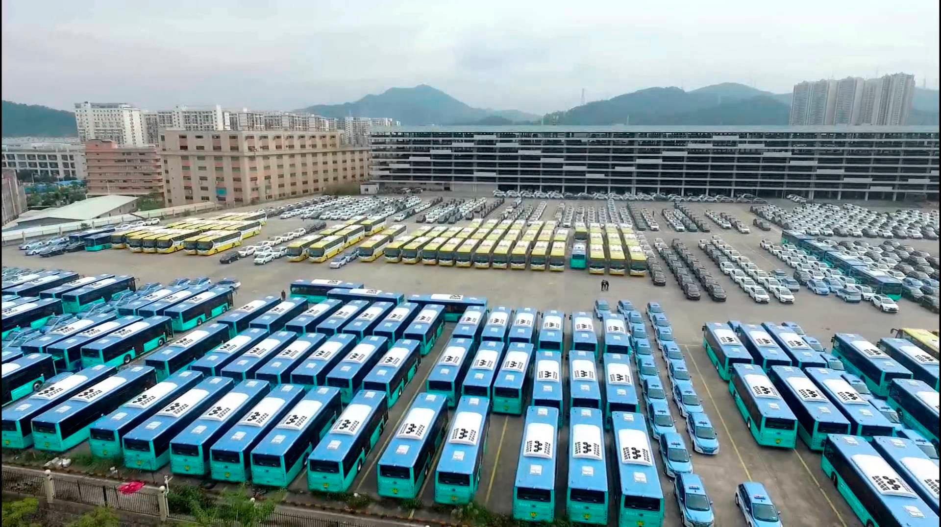 BYD marca 50 mil ônibus