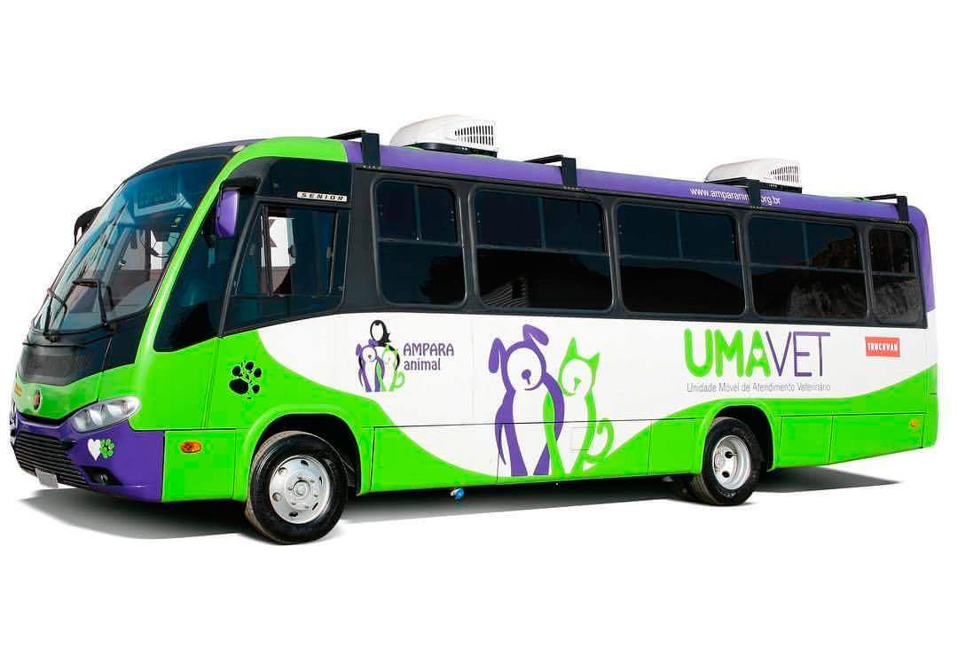 Ônibus da SBCTrans ajuda mais de 10 mil animais todo mês