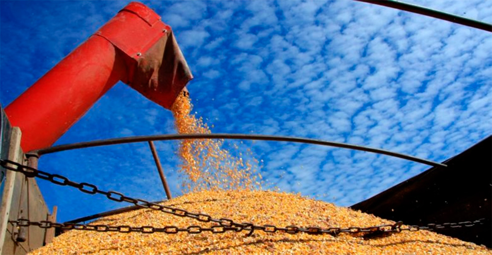 Brasil poderá ter safra recorde de grãos, com 241,3 milhões de toneladas