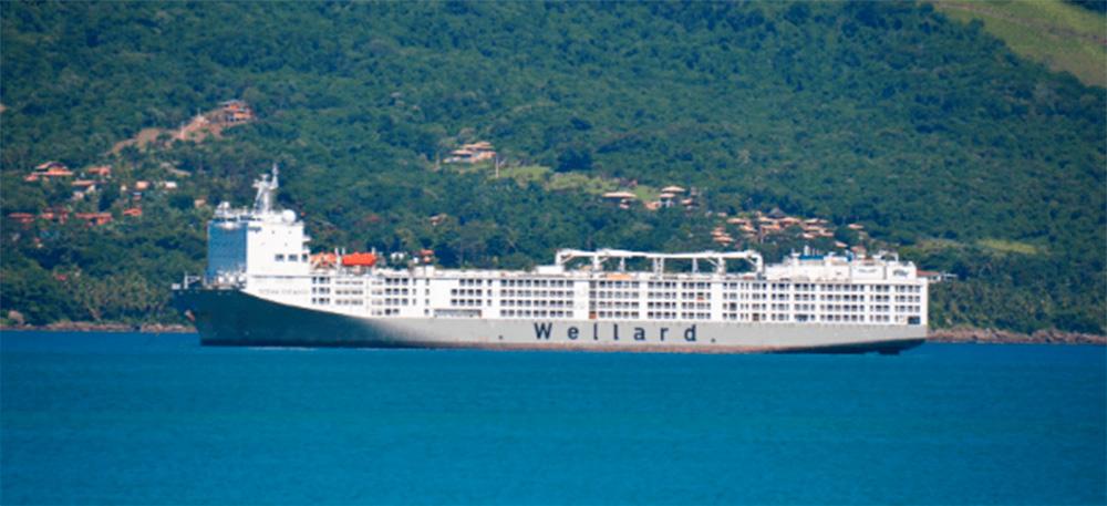 Maior navio boiadeiro do mundo atraca no Brasil